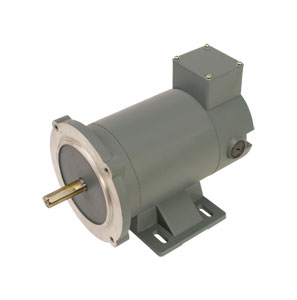 Permanent Magnet DC Motors | OMPM-DCE Series