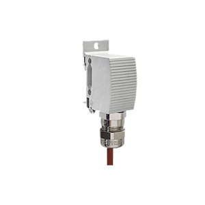 Explosion-Proof Thermostat | REX1850