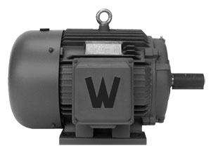 General Purpose AC Motors, Industrial Duty Three-Phase | OME Series