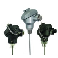Industrial MI Thermocouples with Protection Head & Process Fitting | NB Series