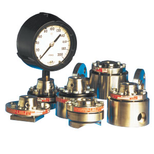 Diaphragm Pressure Seals for Assured Protection and Media Compatibility   Diaphragms